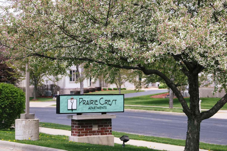 Spring Blooms at Prairie Crest